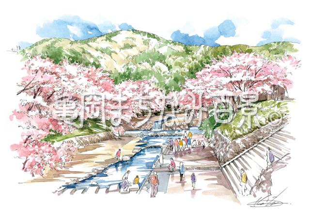 七谷川と吉野桜