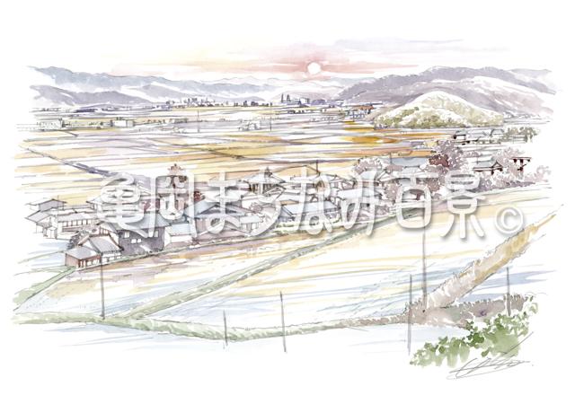 065 夕日の田園風景(千歳町/耕雲寺より)