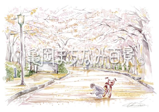 068 「和らぎの道」桜のトンネル通り抜け